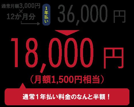 通常月額3,000円×12か月分=36,000円のところ、キャンペーンにて18,000円!(通常1年払い料金のなんと半額!)