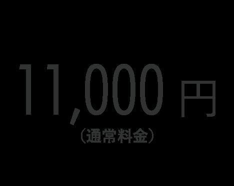 11,000円(通常料金)