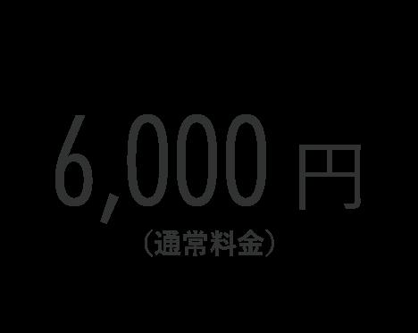 6,000円(通常料金)