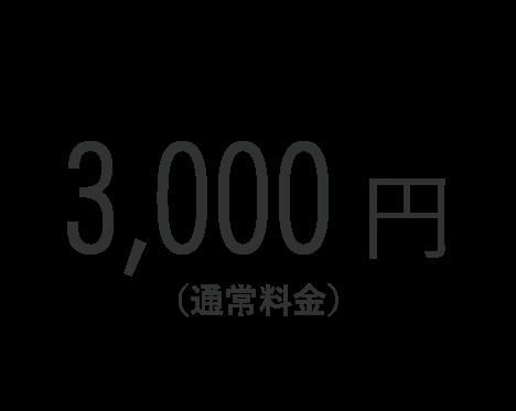 3,000円(通常料金)